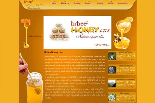 Honey Bee - Website Design Services